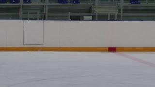 Соревнование по фигурному катанию на коньках на приз ЦФМ, Долгопрудный