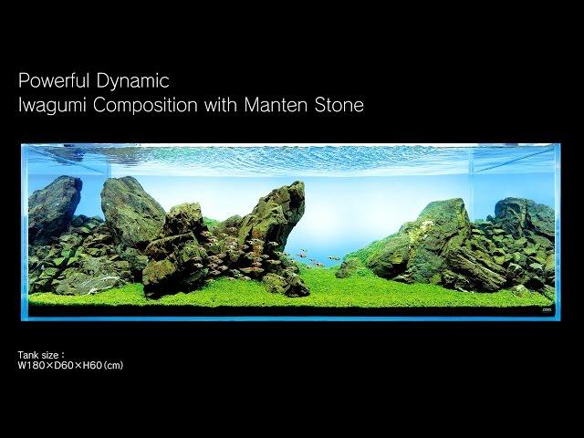 [ADAview] 180cm Aquarium Layout: Iwagumi Composition with Manten Stones