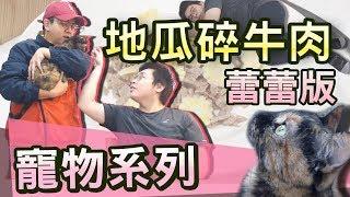 【寵物系列】#4 六嘆的ㄌㄟㄌㄟ,讚!!!feat.六嘆、蕾蕾