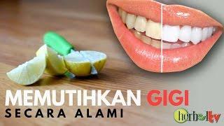 Cara Memutihkan Gigi Dengan Kulit Jeruk Nipis ฟร ว ด โอออนไลน