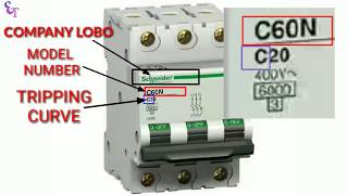 How to Read MCB Nameplate Data Rating Printed on it | MCB rating | Curve  by Electrical technician