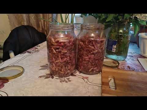 Картофельные ростки,настойка на водке.