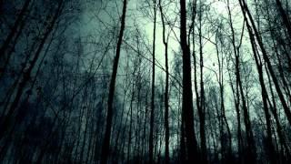 Dissolving of Prodigy - Otvírání studánek + Zasněný, zoufalý (folk doom metal)