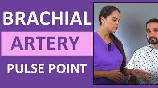 Brachial Artery Pulse Point Location Nursing Skill