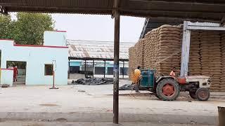Anupgarh fci wheat froad(1)
