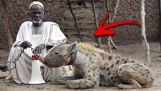İnsanların Kendini Korumak İçin Beslediği 15 Vahşi Hayvan