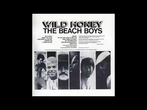 The Beach boys Darlin'   Duophonic STEREO