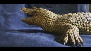 Сегодня заканчиваю свою работу  над деревянной рептилией (крокодил) В этой окончательной части видео, завершающая детализация крокодила из  дерева материал (липа) покраска, стоматология, маникюр на лапах)  выжигание и т.д.  Как и