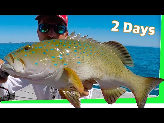 Overnight Tropical Island and Creek explore Fish Taco Catch and Cook EP.418