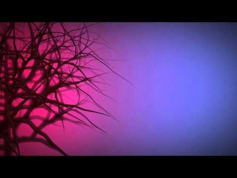 Incarnate (Book Trailer)