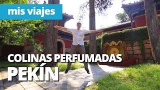 preview picture of video 'PEKÍN: El Parque de las Colinas Perfumadas   Fragrant Hills, China'