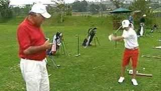 Ernie Els Tempotimer Golf Club Weight & Swing Training Aid