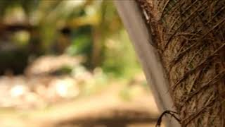 preview picture of video 'Trip MTMR ditanjung apeng,  kec sangkub,  kab.  Bolaang mongondow utara'