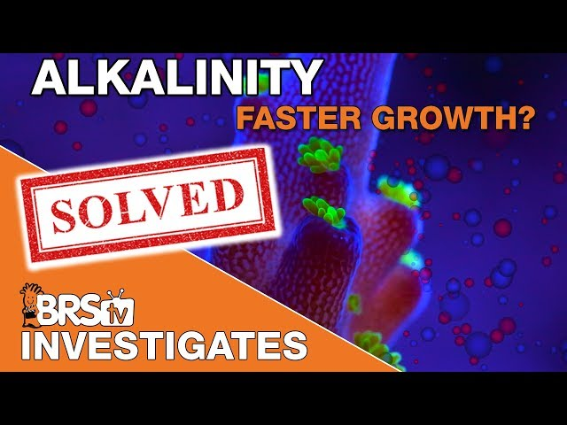 Part I - Faster coral growth with elevated major elements? (Alk/Ca/Mag) | BRStv Investigates