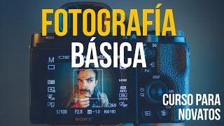 FOTOGRAFÍA BÁSICA - Curso Para Principiantes!