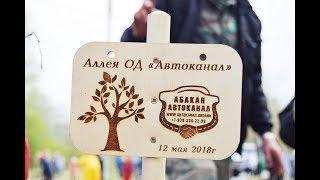 "Аллея памяти от ОД ""Абакан автоканал"""