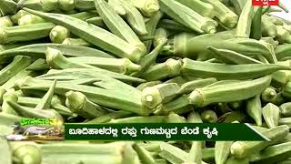 Israel Agriculture Technology In Kannada