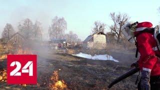 Отследить пожар в лесу теперь можно по приложению - Россия 24