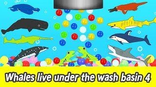 [EN] Whales live under the wash basin 4, kids animals animation, whales adventureㅣCoCosToy