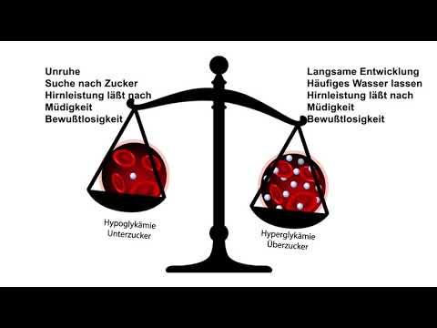 Aufrechterhaltung der Höhe des Blutzuckermechanismus