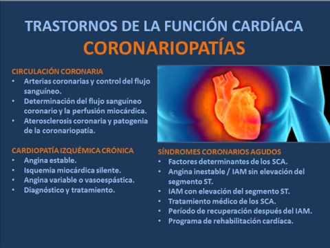Papel de los iones de calcio en la hipertensión arterial
