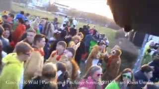 preview picture of video 'Au am Rhein Faschings Umzug 2013 - Teil 3 - Gino THE Wild - Party Cam'