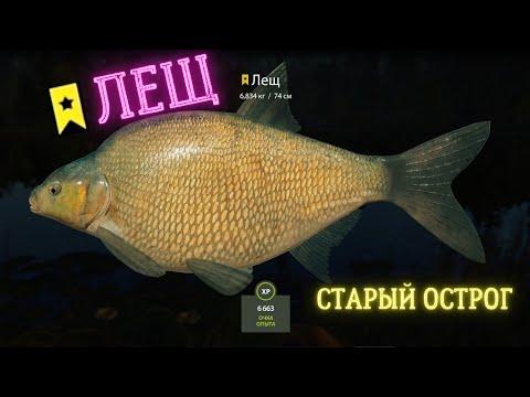 Русская рыбалка 4 (рр4) оз. старый острог лещ russ