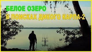 По про рыбалку ловля карпа на озерах
