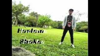 Taiwan Harlem Shake (台灣宜蘭哈林搖) 2013