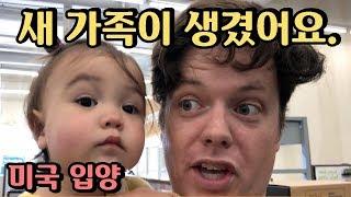 저희 새 가족을 소개합니다😊드디어 한국말 시작한 멜로디!첫마디는?! 😊 미국에서 첫 입양한 펫 😍Melody