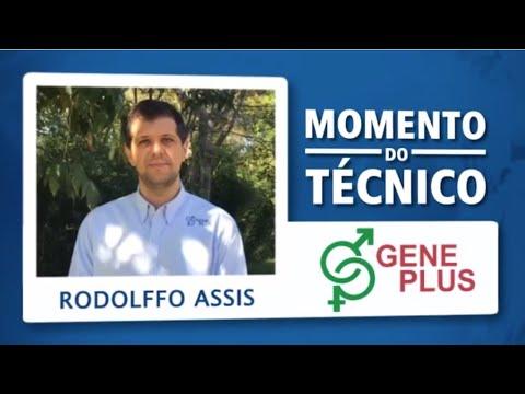Momento do Técnico Rodolffo