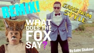 What Does The Fox Say VS. Gangnam Style REMIX (What Does The Fox Say & Gangnam Style Mashup)