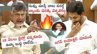 Chandrababu Naidu FIRES on AP CM YS Jagan Mohan Reddy | AP Assembly Sessions 2019 | Political Qube