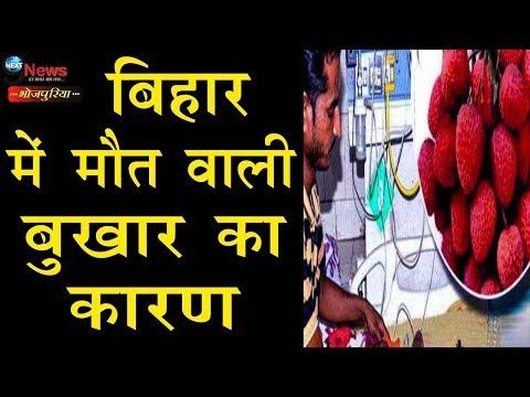 बिहार में प्राणघातक 'बुखार' का कहर इन कारणों से है बरपा, जानिए और समझिए | Encephalitis In Bihar