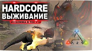 Идем на арену Ragnarok за драконом и мантикорой. Соло HardCore выживание в ARK  (#14 стрим)