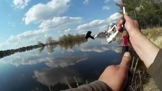 I рыбалка на щуку в кременчуге