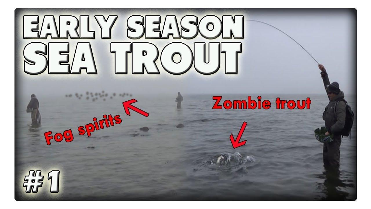 Zombie-Forelle und Nebelgeister! Angeln auf Meerforelle im zeitigen Frühjahr