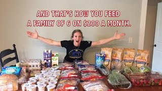 $65 Two Week Grocery haul for a Large Family   The BEST deals I've ever found!
