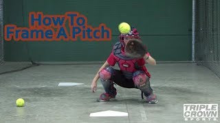 Properly Frame A Pitch - TCS Training Tips