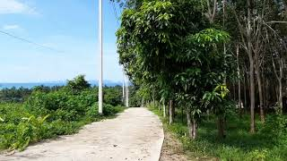 Sloping Land Plot with Spectacular views of the Sea & Mountains in Nong Thaley