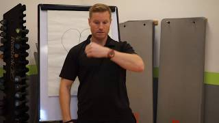 Where is the heart located?   Storm Fitness Academy