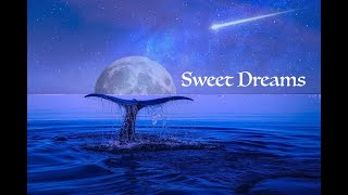 Deep Sleep Music 6.5 Hours~Relaxing Music for Sleeping~Meditation Music~Stress Relief~Soothing Music