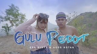 Kunci Gitar Gulu Pedot - Esa Risty feat Agos Kotak, Lirik Lagu dan Chord Mudah Dimainkan