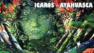 ICAROS CHAMANICOS   Ayahuasca, Cantos For Travel In Ayahuasca Ceremonies, アヤフアスカ