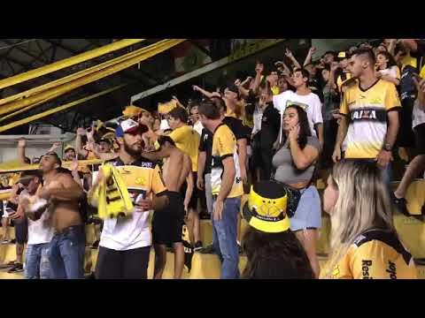 """""""Os Tigres na Copa do Brasil - Criciúma x Chapecoense"""" Barra: Os Tigres • Club: Criciúma"""