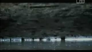 Never Far Away - Chris Cornell (Fan Video)