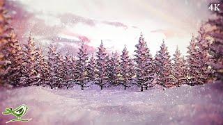 Stille Nacht, heilige Nacht • Instrumentales Weihnachtslied (4K)