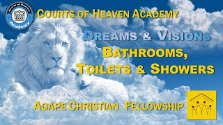 D2 - Part 3: Dreams & Visions: Bathroom - Toilets & Showers