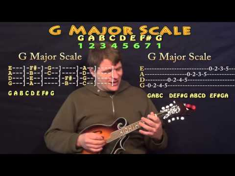 Mandolin Crash Course for Beginners - Easy First Lesson