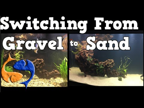 Switching Your Aquarium Substrate From Gravel To Sand! 125 Gallon Aquarium Overhaul!